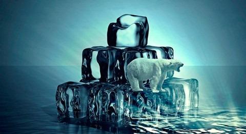 ¿Cómo luchar cambio climático?