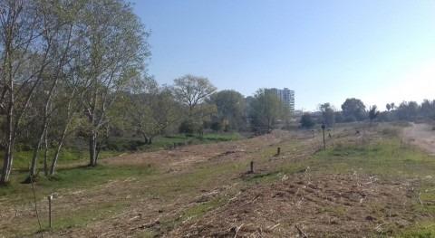 Finalizadas actuaciones conservación tramo río Francolí paso Tarragona