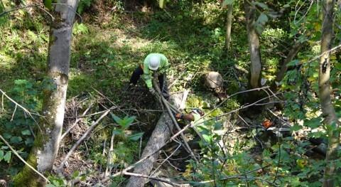 CHC retira depósitos acumulados cauce río Huerna, concejo Lena