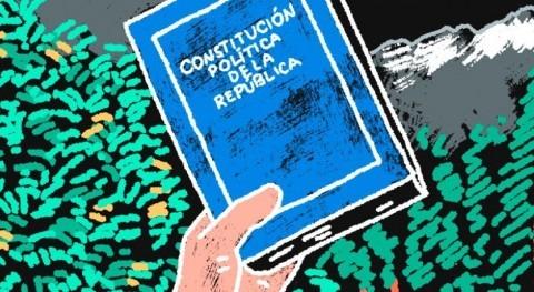 Agua, mercado agua y constitución política