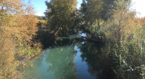 MAPAMA recuperará cuatro kilómetros río Segura paso Molina Segura