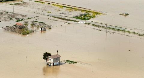 avenida Ebro supera previsiones: rotura mota contención Castejón