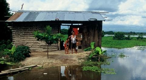 crisis climática necesita tu cortometraje