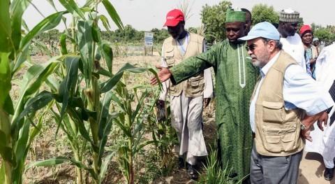Cuenca Lago Chad: Hambre y pobreza debido falta agua y al cambio climático