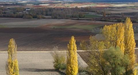 claves calcular Huella Hídrica producto agrícola