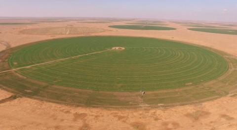 investigación monitorea extracción aguas subterráneas uso agrícola zonas áridas