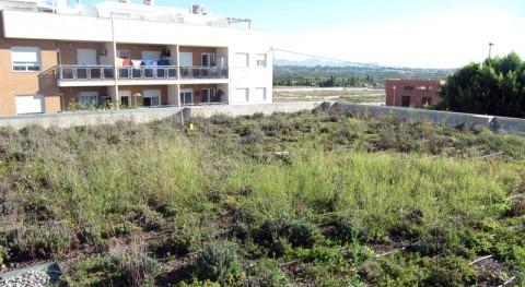 cubiertas vegetadas son buena medida adaptación al cambio climático Mediterráneo