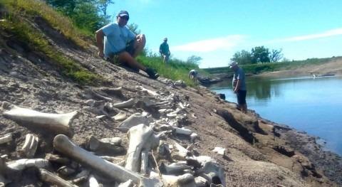 hallazgo que confirma evento climático descrito Darwin viaje al Río Plata