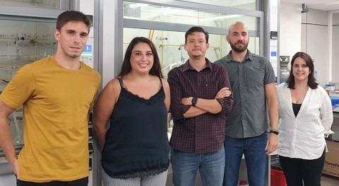 Científicos ICMol sintetizan material capaz degradar agentes nerviosos agua