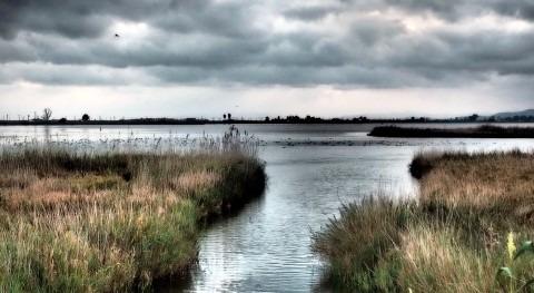 Licitadas obras mejoran margen Delta Ebro junto bahía Alfaques