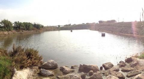 Licitada mejora recarga acuífero Valle y delta Llobregat