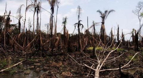 Desastre anterior en el Delta del Níger (Flickr/CC, https://www.flickr.com/photos/sosialistiskungdom)