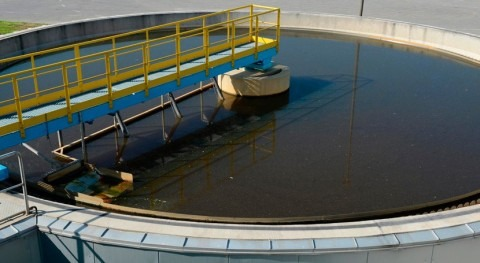 estudio, alta salinidad aguas depuradas Ibiza imposibilita reutilización