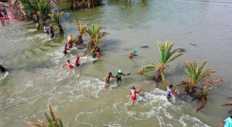 desastres naturales provocan casi 10 millones desplazados primera mitad 2020