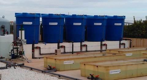Fotocatálisis solar descontaminar aguas: solución alternativa, económica y ecológica