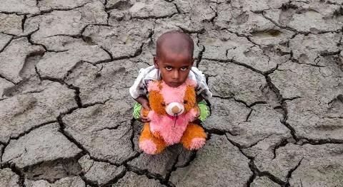 Día Mundial Lucha Desertificación y Sequía 2020: cuando Tierra nos pide ayuda