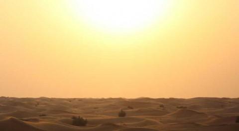últimos cuatro años, más cálidos que se tienen registros