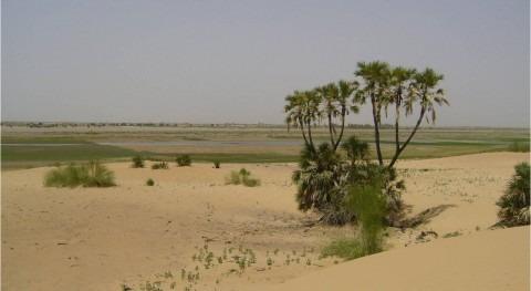 Estancias investigadores argelinos CENTA