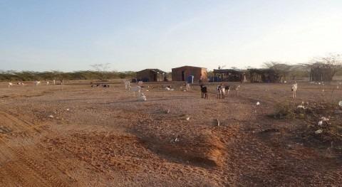 falta agua Guajira pone indígenas wayúu al borde extinción