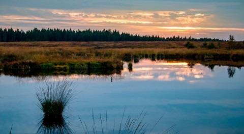 Día Mundial Humedales 2019: cambio climático, no estamos solos