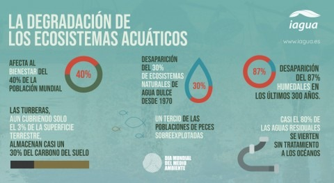degradación ecosistemas acuáticos: Infografía Día Mundial Medio Ambiente 2021