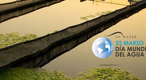 Día Mundial Agua 2017