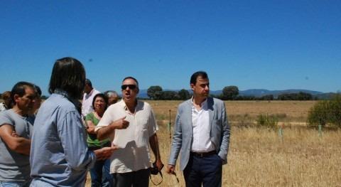 Operación CO2: Recuperar terrenos marginales cultivos leguminosas y cereales