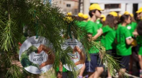 Más 100 niños Beniel apadrinan árbol Día Mundial Medio Ambiente