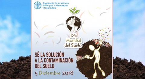 ¡Sé solución contaminación suelo! Día Mundial Suelo