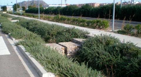 gestión alternativa agua lluvia mediante sistemas drenaje sostenible