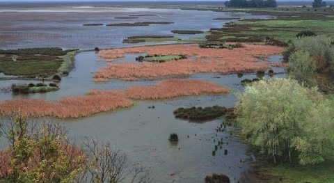 "Abogada General TUE dice que extracciones ""desmesuradas"" agua Doñana son ilegales"