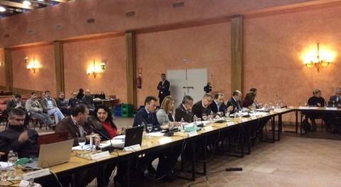 """Serrano: """" aprobación Plan Corona Forestal, Gobierno andaluz cumple compromisos"""""""