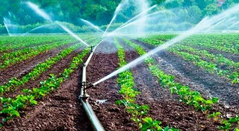 Agricultores San Carlos Ecuador aprenden drenaje agrícola