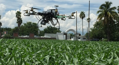 ¿Cómo optimizar riego agrícola drones?