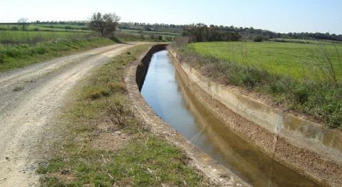 Water for Sustainable World: Retos hídricos alimentación mundial