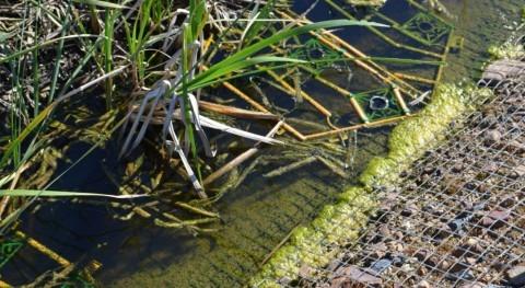 Contaminación difusa: más claro que agua