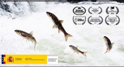 "documental científico ""Durienses"", liderado CHD, llega Ávila"