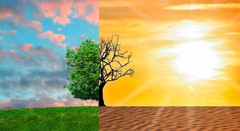 Cambio climático: reto nuestro tiempo