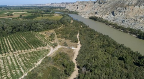 Trabajando 11 enclaves permeabilizar masas sedimentos vegetados tramo medio