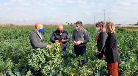 Murcia trabaja prácticas riego y fertilización eficientes que minimicen estrés ambiental