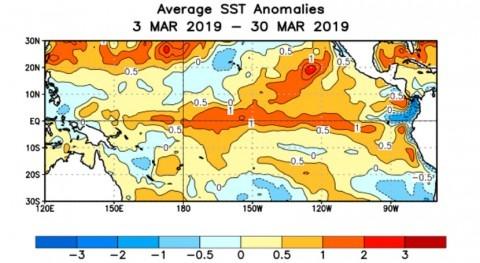Niño impacta más fuerza Pacífico Central