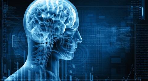 memoria y consciencia agua nuestro organismo