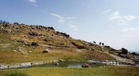 Madrid finaliza restauración ecológica y paisajística antigua presa Alberca