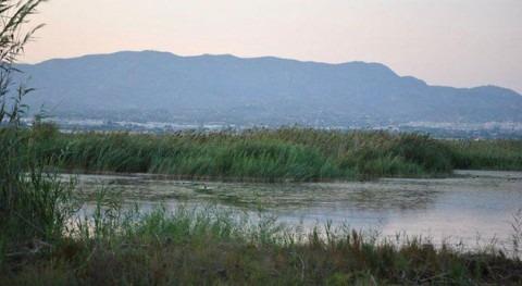 Valencia compensará regantes Hondo gestión embalses Parque Natural