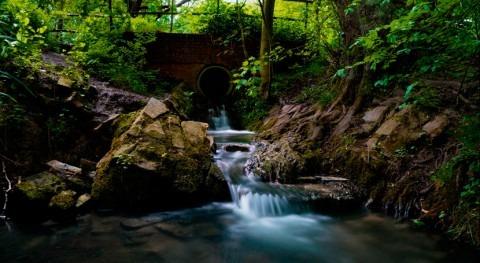 Proyecto AsFree: sistema más eficiente eliminación arsénico aguas contaminadas