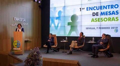 AECID participa Mesas Asesoras Observatorio Agua EMASESA