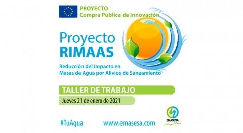 Emasesa celebra taller reducción impacto masas agua alivios saneamiento