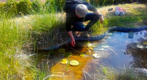 END-OSTRACOTOX: Monitorización disruptores endocrinos aguas superficiales