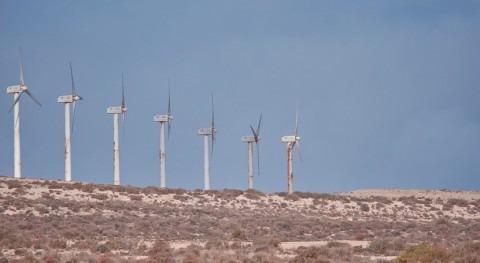 Greenpeace pide celeridad frenar cada vez más graves impactos cambio climático
