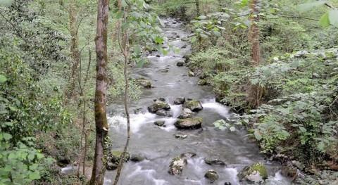 Consulta pública Esquema Provisional Temas Importantes cuencas internas CAPV 2021-2027